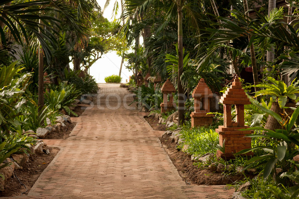 tropical garden and  the road to sea beach Stock photo © master1305