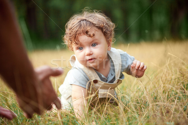 The little baby or year-old child on the grass in sunny summer day. Stock photo © master1305