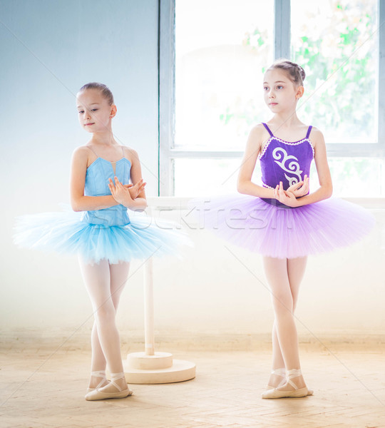 The two little ballet girls in tutu  Stock photo © master1305