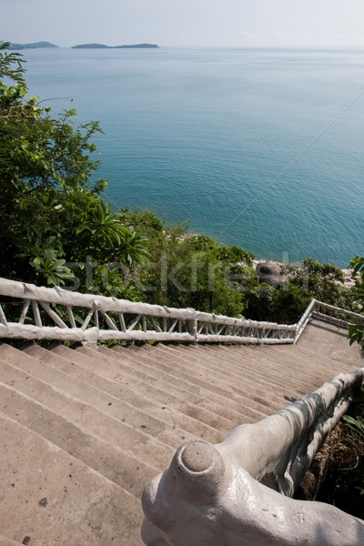 Stockfoto: Tropische · tuin · weg · zee · strand · palmbomen