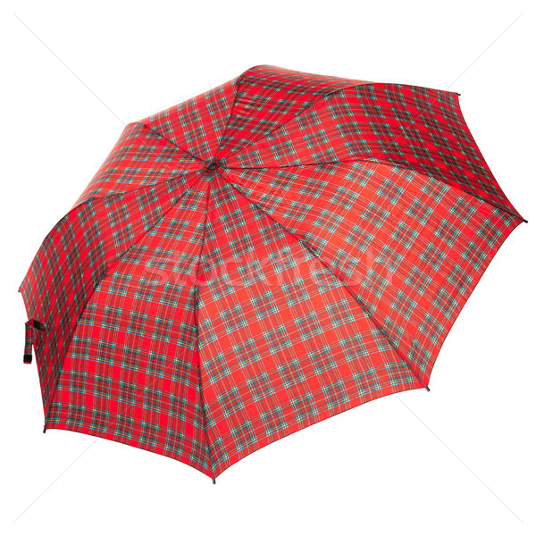 The checkered umbrella isolated against white background Stock photo © master1305