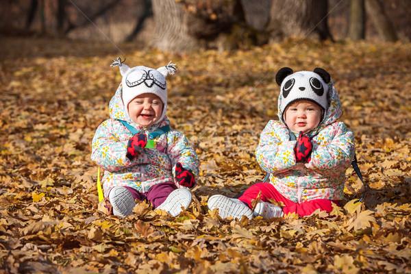 Kettő kicsi lánycsecsemők ül őszi levelek mosoly Stock fotó © master1305