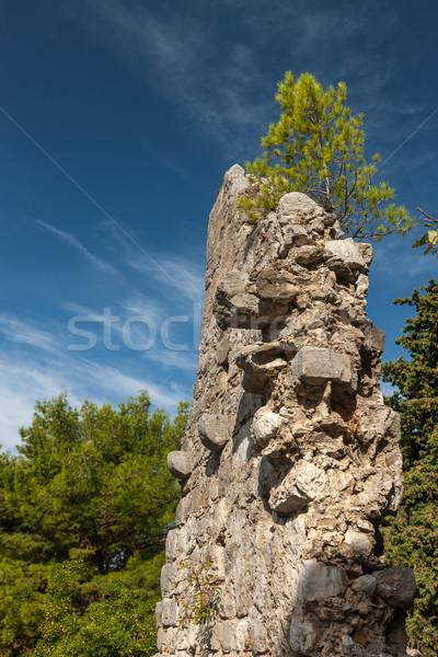 высокий крепость стен Бар Черногория живописный Сток-фото © master1305