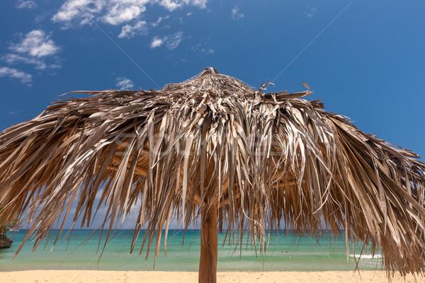 Stro paraplu tropisch strand mooie zon natuur Stockfoto © master1305