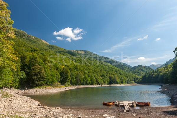 Kicsi tó hegy park Montenegró víz Stock fotó © master1305