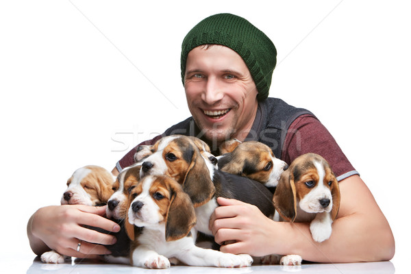 Homme grand groupe Beagle chiots heureux Photo stock © master1305