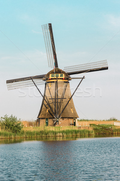 Traditional Dutch windmills with green grass in the foreground, The Netherlands Stock photo © master1305