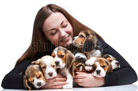 Donna grande gruppo beagle cuccioli felice Foto d'archivio © master1305
