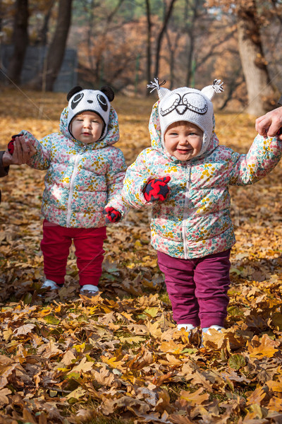 Kettő kicsi lánycsecsemők áll őszi levelek lány Stock fotó © master1305