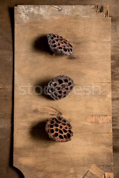 Florista área de trabalho trabalhando ferramentas madeira Foto stock © master1305