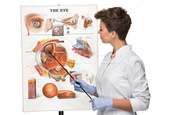 Oculista oculista mulher estrutura olho branco Foto stock © master1305