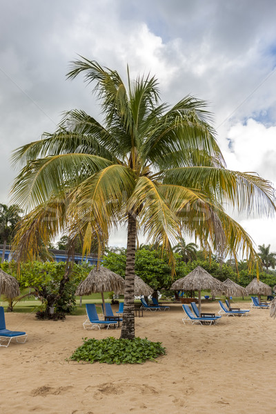 Sunbed and umbrella on a tropical beach Stock photo © master1305