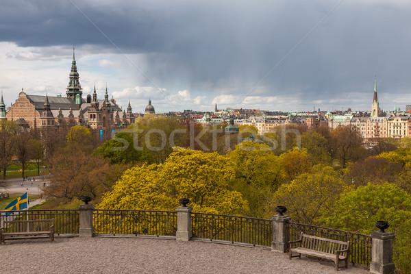 Bella view Svezia stormy cielo nubi Foto d'archivio © master1305