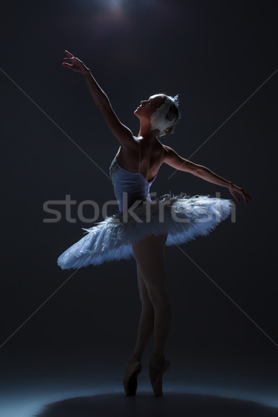 Portrait of the ballerina in ballet tatu on dack background Stock photo © master1305