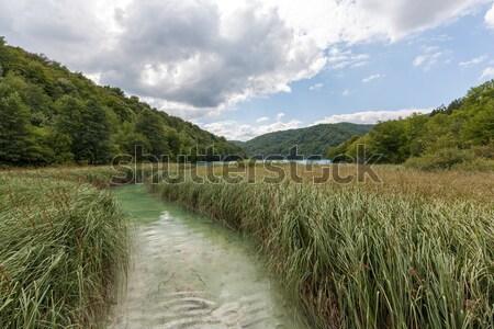 Plitvice lakes of Croatia  Stock photo © master1305