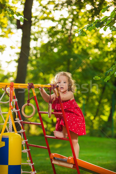 Kicsi kislány játszik szabadtér játszótér zöld fű Stock fotó © master1305