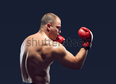 Stockfoto: Jonge · bokser · boksen · Rood · handschoenen · zwarte