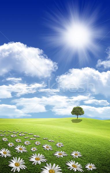 Foto nubes sol hermosa cielo azul Foto stock © mastergarry