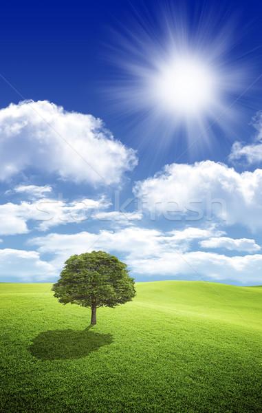 写真 雲 太陽 美しい 青空 ストックフォト © mastergarry
