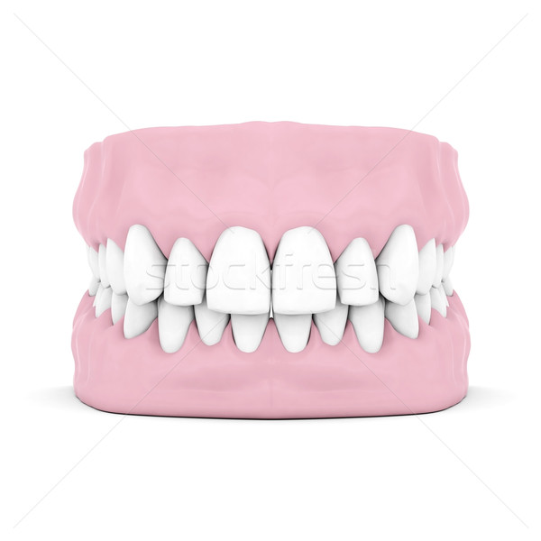 Dentures Stock photo © mastergarry