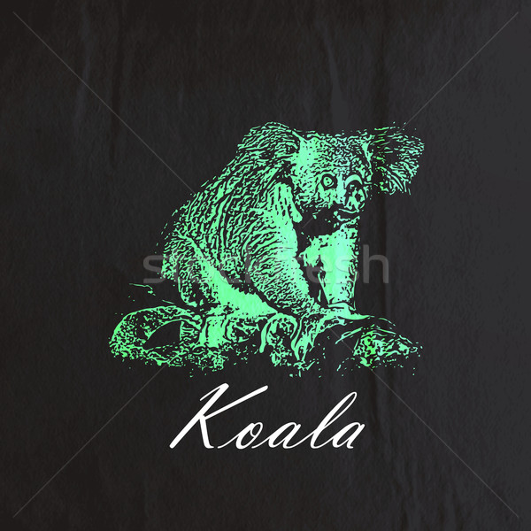 vector vintage illustration of a green koala bear on the old bla Stock photo © maximmmmum