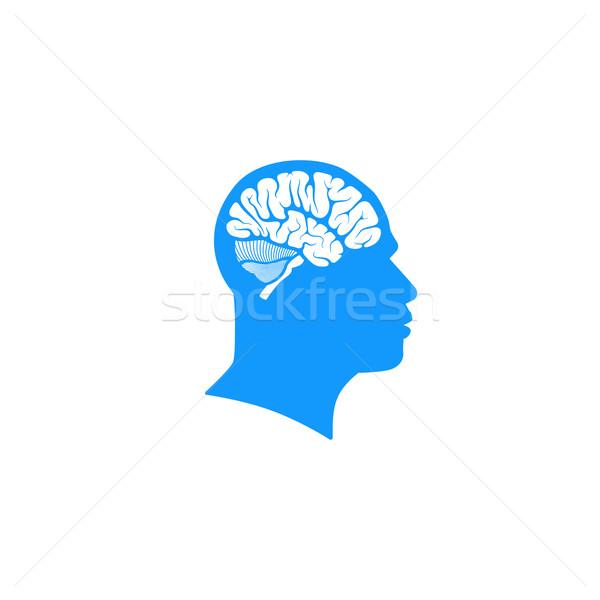 Menselijke hoofd hersenen medische lichaam vintage Stockfoto © maximmmmum