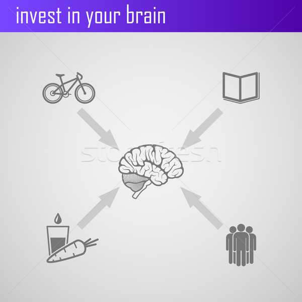 invest in your brain. Infographic elements for web or print design  Stock photo © maximmmmum