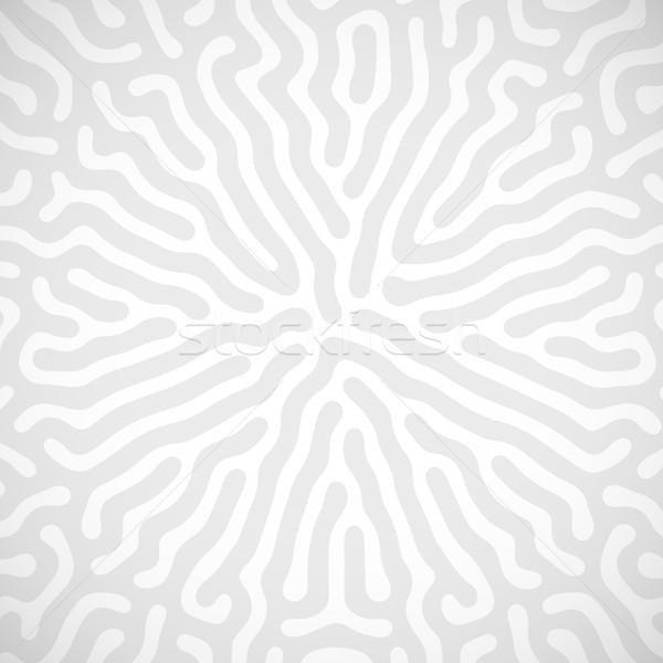 Véletlenszerű bio vonalak vektor absztrakt labirintus Stock fotó © maximmmmum