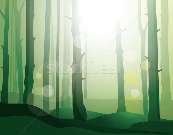 énigmatique forêt ciel herbe nature fond Photo stock © maximmmmum