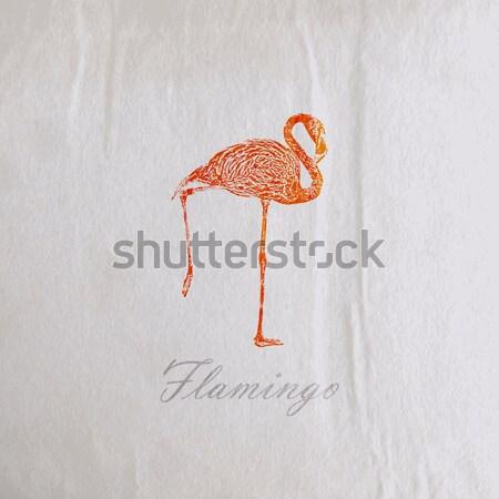 Vector vintage illustratie roze flamingo oude Stockfoto © maximmmmum