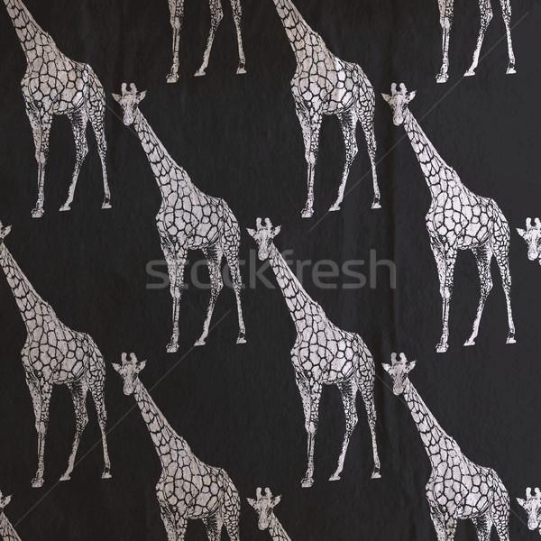 vector vintage illustration of giraffe pattern on the old black  Stock photo © maximmmmum