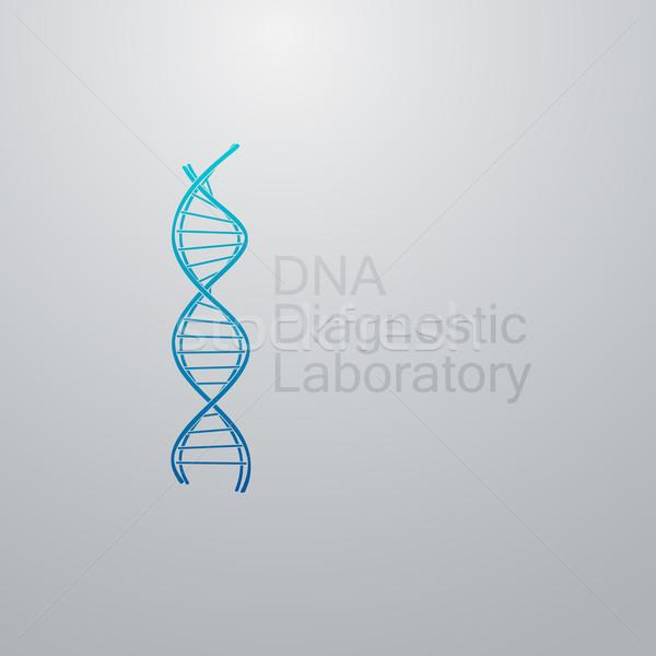 DNS ikon lánc logo diagnosztikai laboratórium Stock fotó © maximmmmum