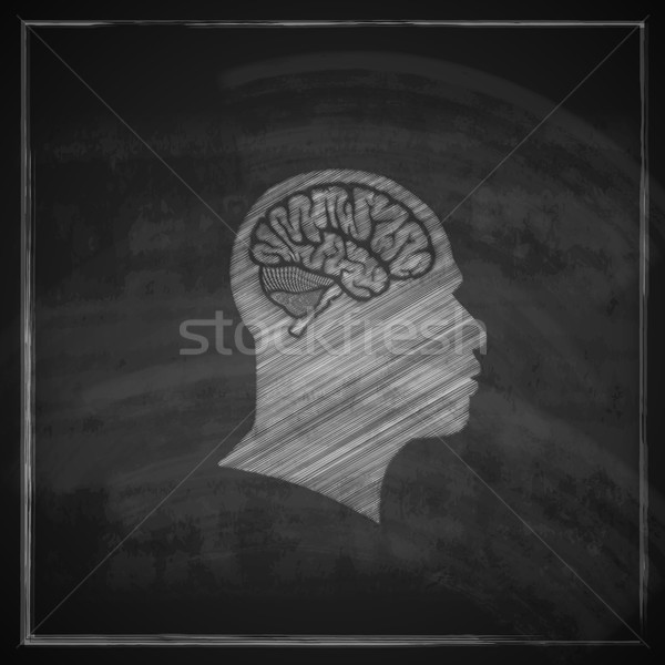 vector illustration of human head with brain on blackboard background  Stock photo © maximmmmum