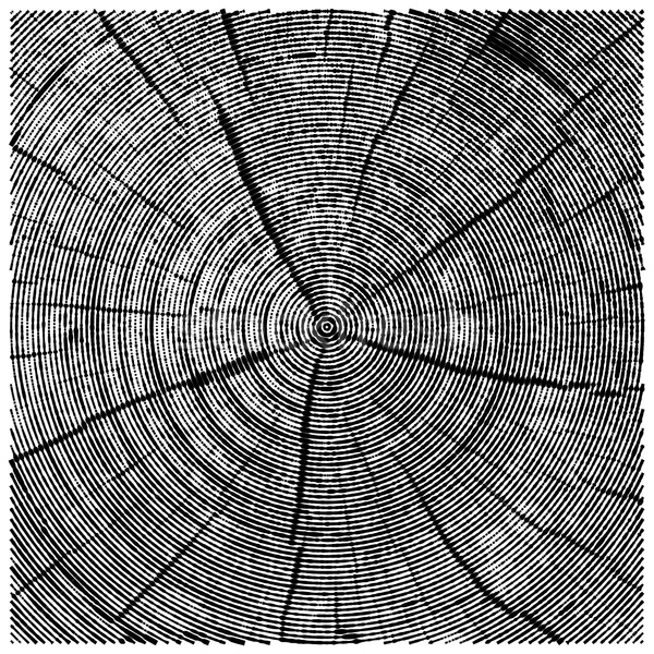 vector natural illustration of engraving saw cut tree trunk. abstract sketch of wood texture Stock photo © maximmmmum