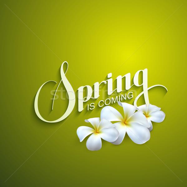 Primavera temporada etiqueta retro flores Foto stock © maximmmmum