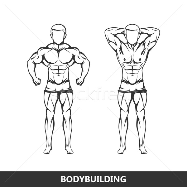 Vector illustration of muscled man body silhouettes. posing athlete. fitness or bodybuilding logo co Stock photo © maximmmmum