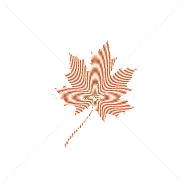 秋 カエデの葉 刻ま 自然 葉 ウェブ ストックフォト © maximmmmum