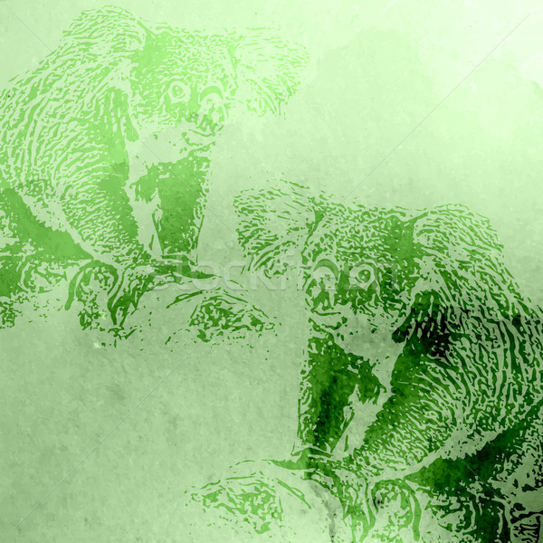 vector vintage illustration of green watercolor koala bears on t Stock photo © maximmmmum