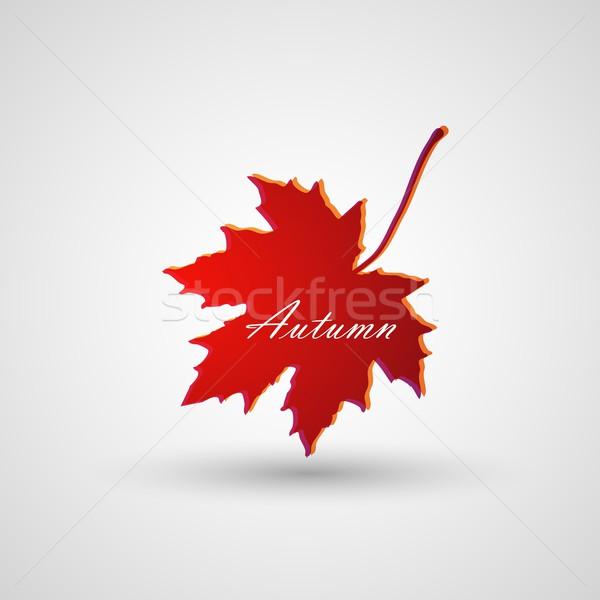 カエデの葉 ツリー 森林 自然 葉 赤 ストックフォト © maximmmmum