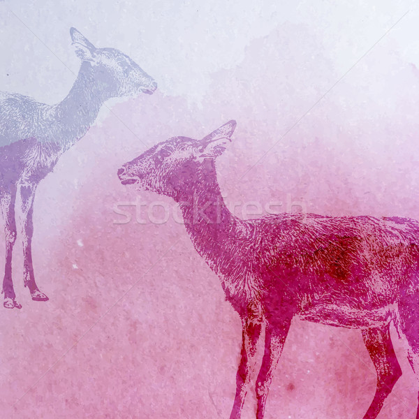 vector vintage illustration of a watercolor goat or antelope on  Stock photo © maximmmmum