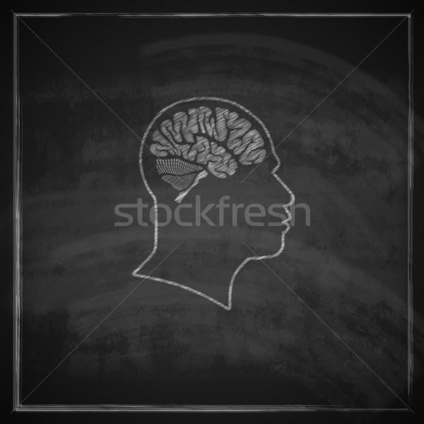 Vintage иллюстрация человека голову мозг доске Сток-фото © maximmmmum