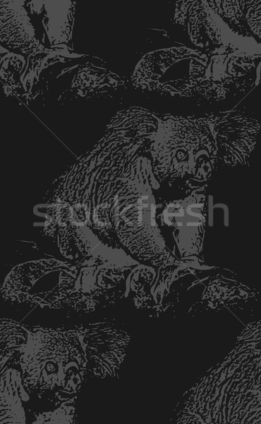 Vecteur vintage illustration Koala ours Photo stock © maximmmmum