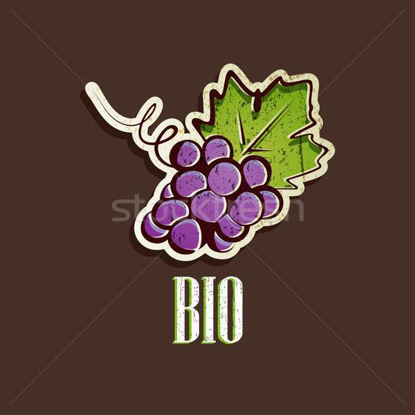 vintage illustration with grapes  Stock photo © maximmmmum