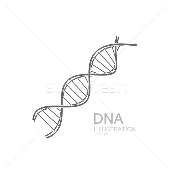 Stock photo: DNA icon.