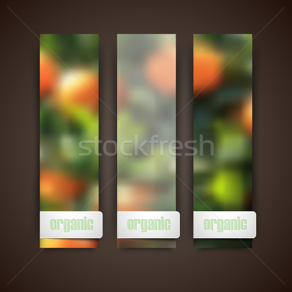 Set of banners with blurred background of orange grove and organic food label, vector design  Stock photo © maximmmmum