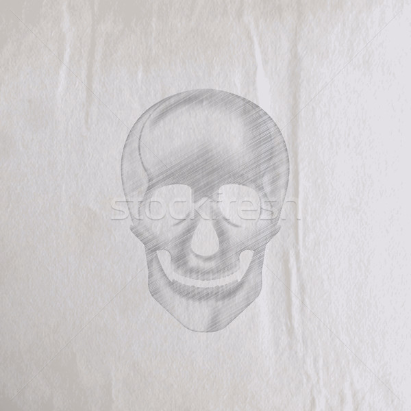 vector illustration of a hand-drawn pencil human skull on an old wrinkled paper texture Stock photo © maximmmmum