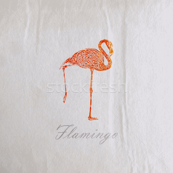 vector vintage illustration of a pink flamingo on the old wrinkled paper texture Stock photo © maximmmmum