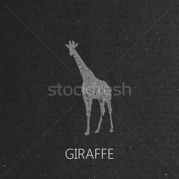 giraffe on the black cardboard background Stock photo © maximmmmum