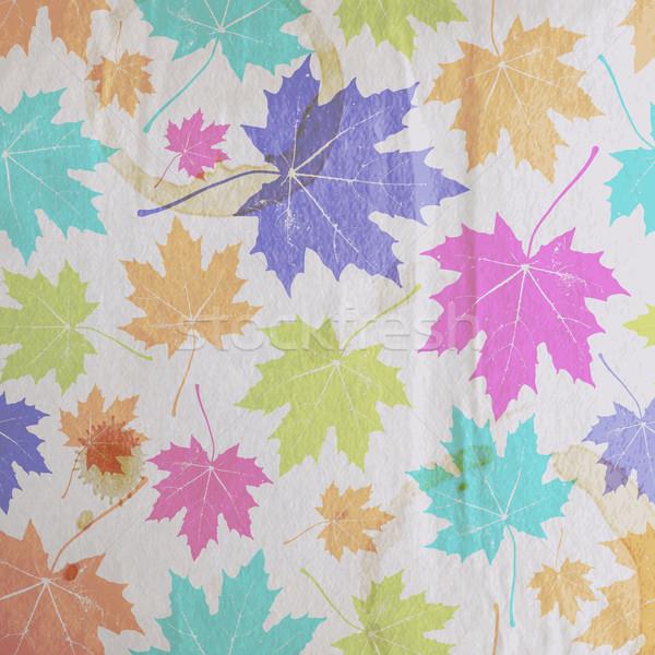 Klasszikus virágmintás ősz ősz juhar levelek Stock fotó © maximmmmum
