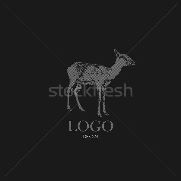 vector illustration with engraving antelope or goat. Logo design Stock photo © maximmmmum